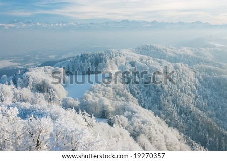Wonderful winter day with trees covered with white frost. View from Uetliberg, Zurich, Switzerland