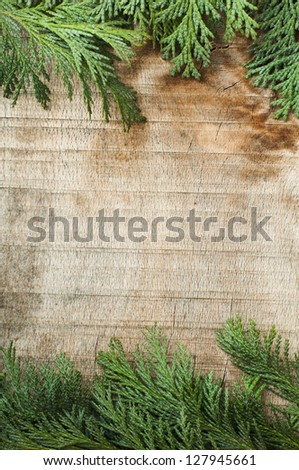 Wood and fir branches background. Leafs border - stock photo