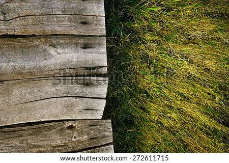 Wood background.  Grass background. Grass over wood. Nature background with grass and wood - stock photo