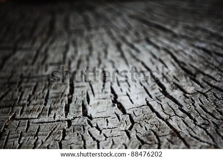 wood background macro close up - stock photo