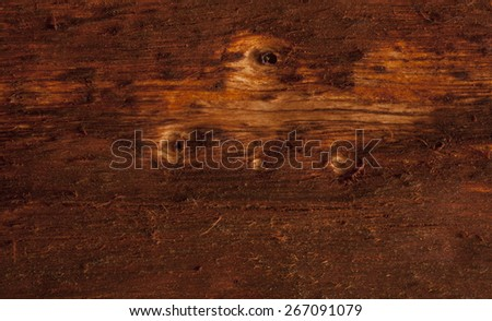 wood bark - stock photo