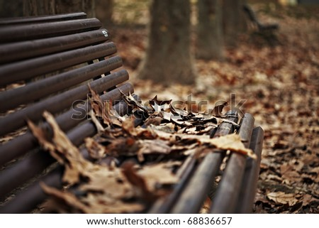 Wood bench outdoors on a winter autumn day. Warm light makes all the fallen dead leaves shine with a reddish and yellowish color. - stock photo