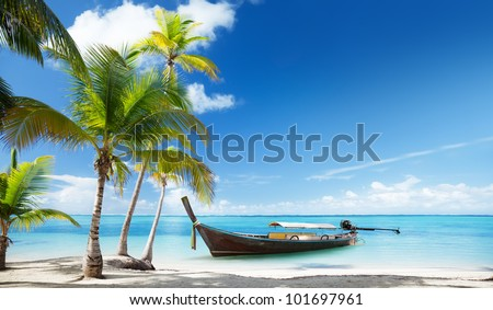 wood boat on the beach