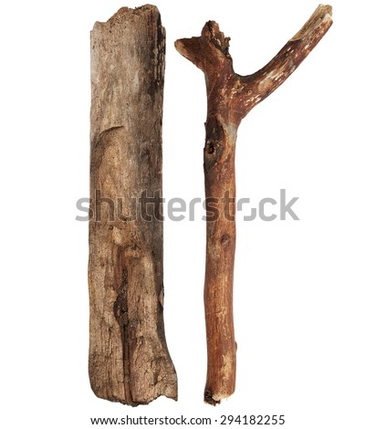Wood branch isolated on white background - stock photo