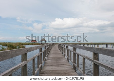 Wood bridge Background