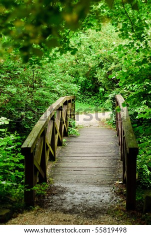 wood bridge in forest - stock photo