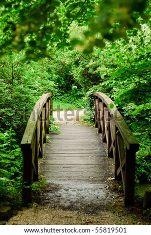 wood bridge in forest - stock photo