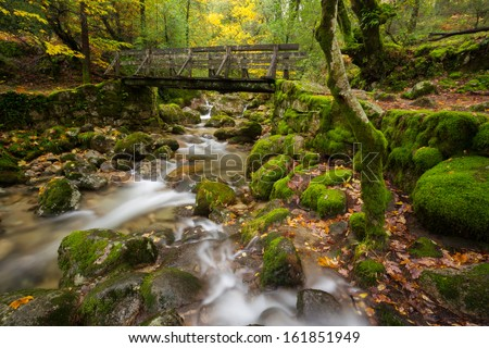 Wood Bridge in Geres National Park, Portugal - stock photo