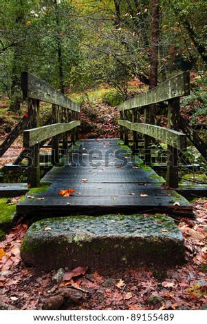 wood bridge in the forest - stock photo