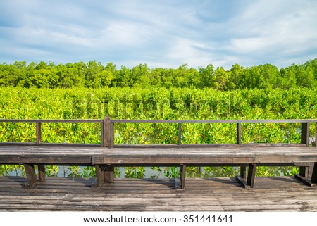 Wood bridge pavilion in mangrove forest, Thailand