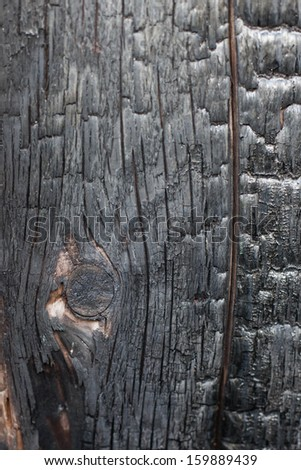 wood burn - stock photo