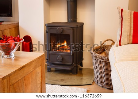 Wood burning stove - stock photo