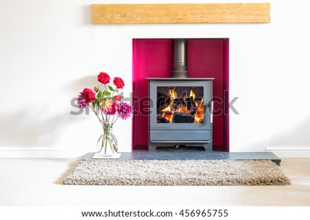Wood burning stove, with blazing log fire, in a magenta colored recess in a white room with a vase of dahlia flowers. High key