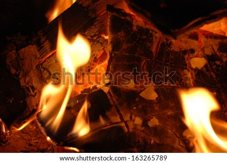 Wood combustion produces beautiful flame