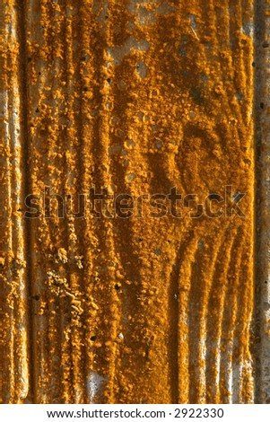 Wood covered with orange lichen and vertical grain