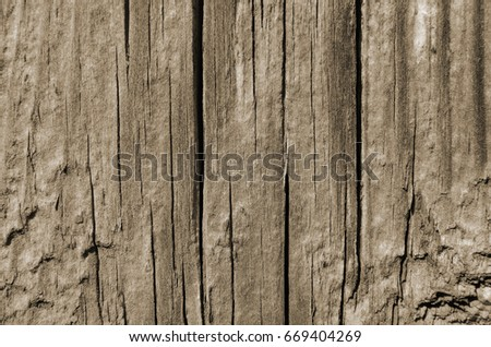 Wood cracked texture, vertical lines, background abstraction