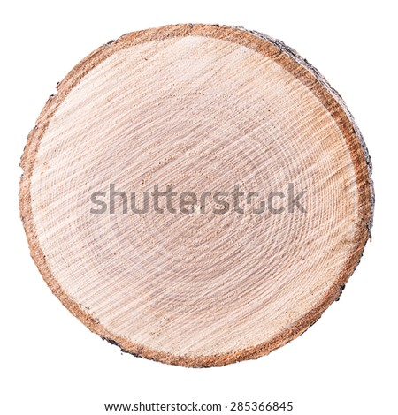 wood cut background ring texture - stock photo