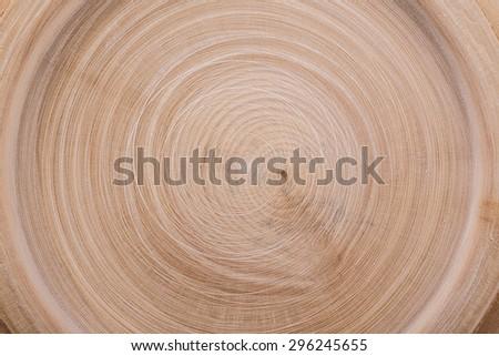 wood cut circles texture background - stock photo