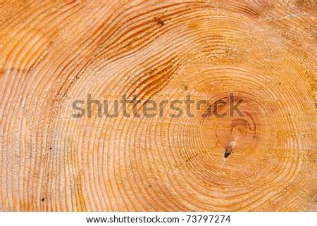Wood Detail - stock photo