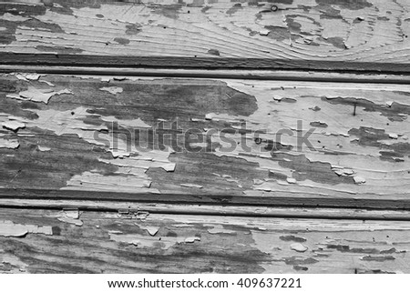 Wood Doors Texture, black and white - stock photo
