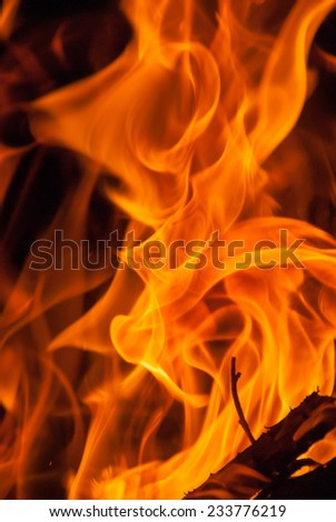 Wood Fire Flame - stock photo
