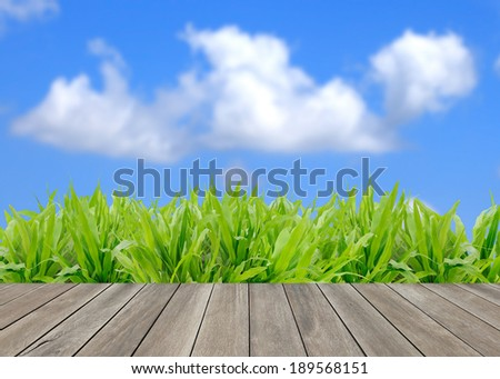 Wood floor and green grass with blue sky background