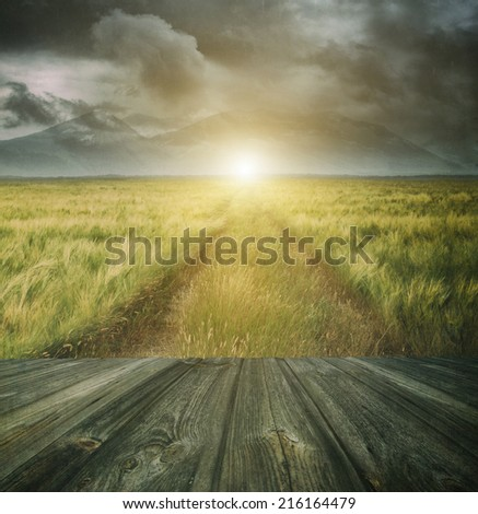 Wood floor with a prairie path and sky in background  - stock photo