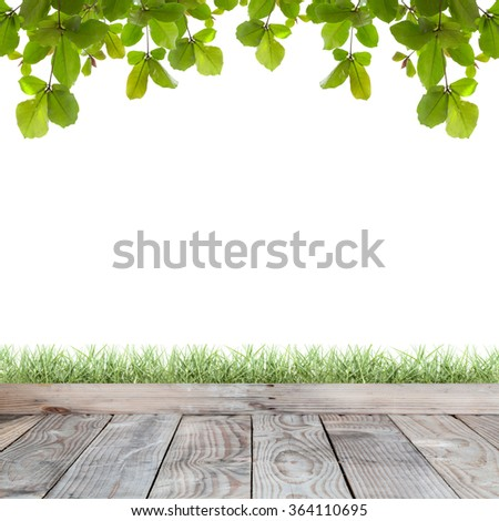 Wood floor with green grass and Fresh Green leaf isolated background,For product display - stock photo