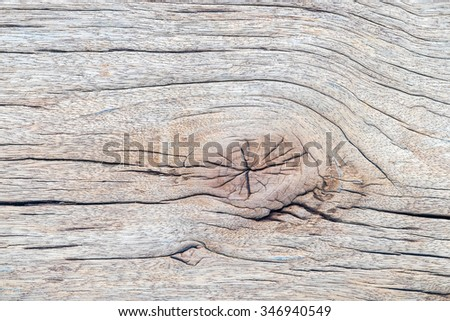 Wood gnarl texture background.