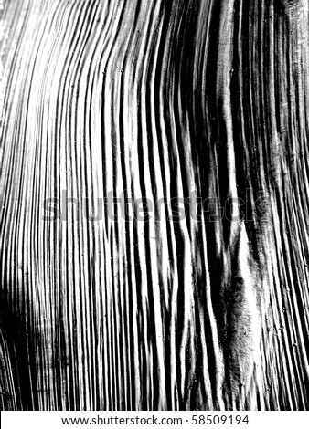 wood grain background black and white - stock photo