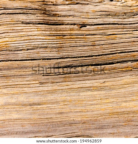 Wood Grain Organic Background Texture Pattern - stock photo