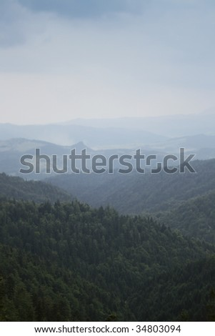 wood in mountains - stock photo