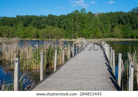 wood lake park boardwalk crossing wetlands and cattail marshes bordered by forest in richfield minnesota - stock photo