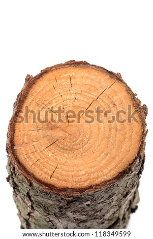 Wood log as fire wood in front of a white background
