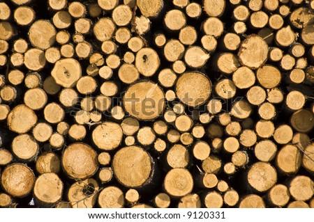 Wood log pile background - stock photo