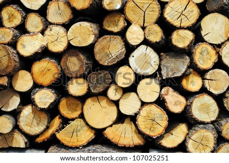 wood, logs and split trunks, useful as background