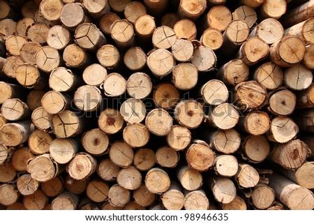 wood logs background - stock photo