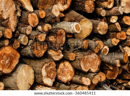 Wood logs texture / background