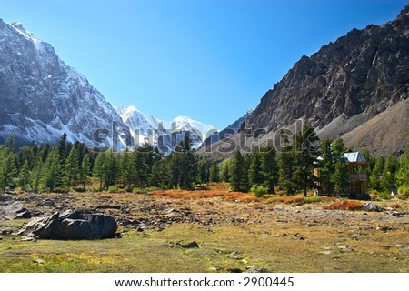 Wood, mountains and glacier. Altay. Russia.