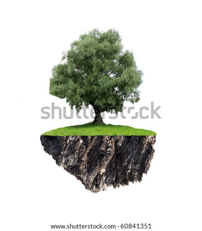 Wood on the flying island. Fantasy abstraction. - stock photo