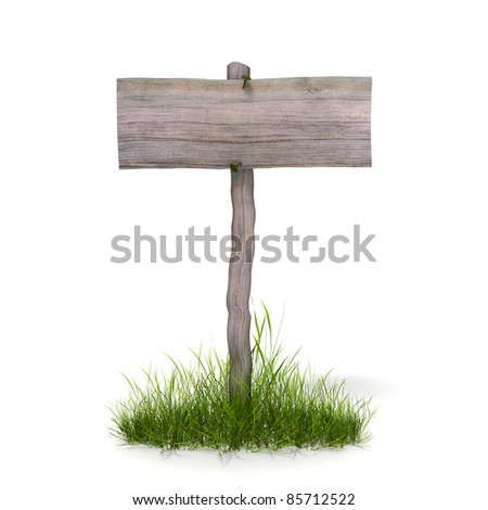 wood panel and grass on white background - stock photo
