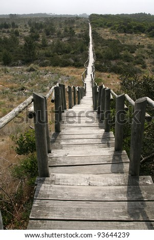 Wood Path, Aveiro, Portugal - stock photo