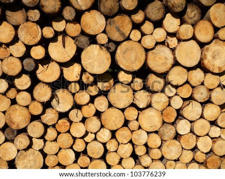 Wood pile A close up from a wood pile. - stock photo