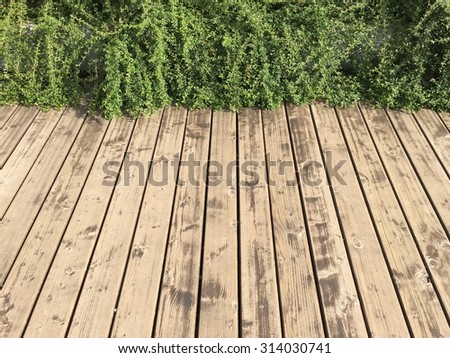 Wood Planks Outdoor