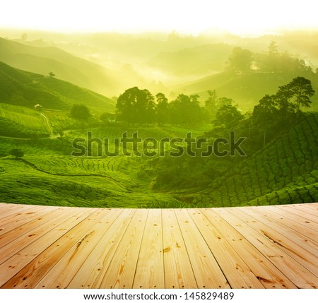 Wood platform beside tea plantation in  morning view, cameron highland malaysia - stock photo