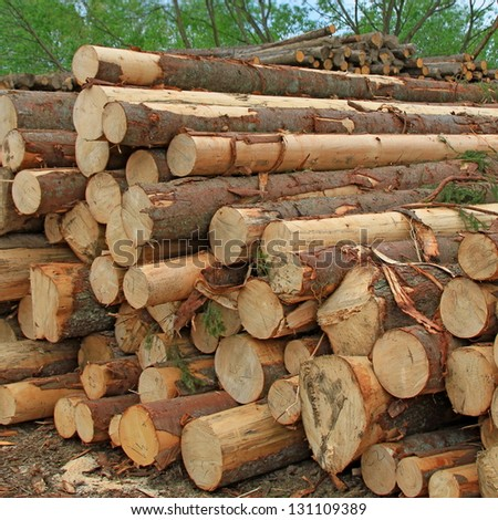 Wood preparation - stock photo