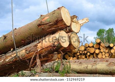 Wood preparation - stock photo