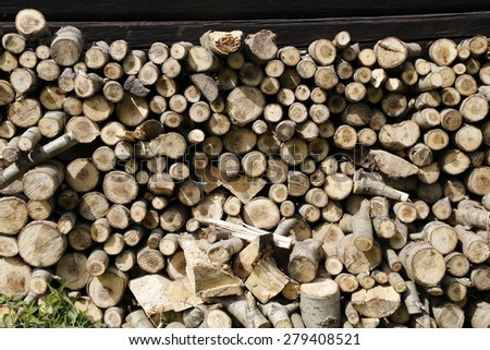wood rings as natural background, stump stack, pine wood trunks - stock photo