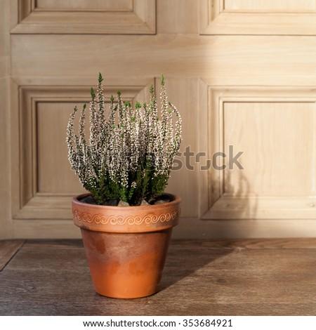 wood rustic heather pot natural - stock photo