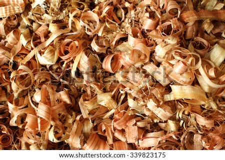 Wood shavings on the floor of a carpenter's workshop.